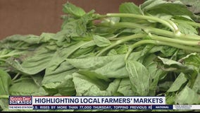 Winter Park Farmer's Market: How to grow your own herbs