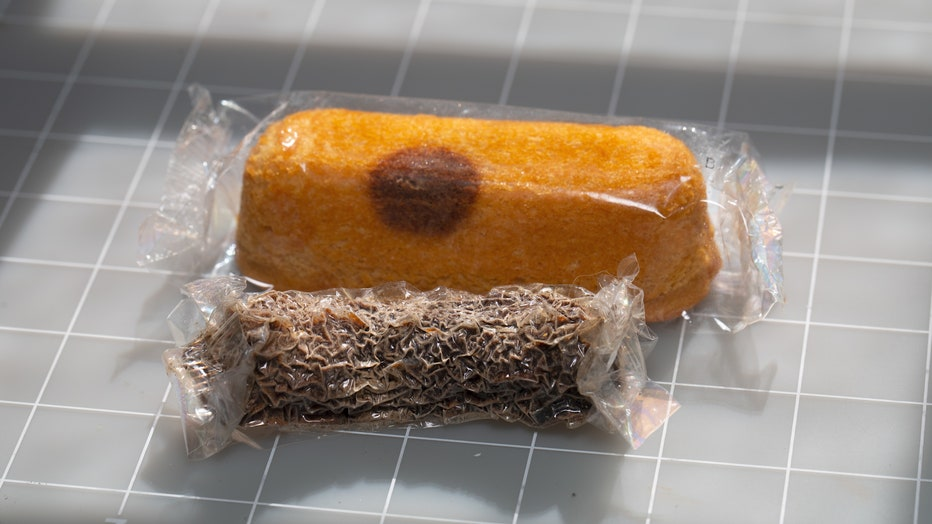 Moldy-Twinkie3.jpg