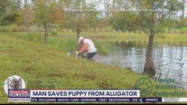 Man who saved puppy from alligator talks to Good Day Orlando