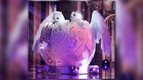 'The Masked Singer' sent the Snow Owls home and a panelist knew 'hoo' they were
