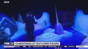 David Martin Reports: Christmas at Gaylord Palms
