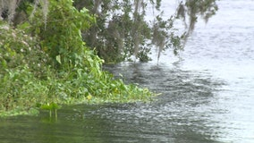 Lake County monitoring river levels after Eta moves through