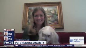 Pets reduce anxiety during pandemic