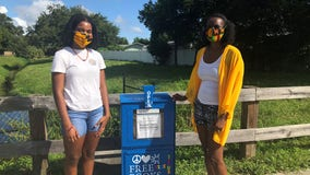 Fern Park mom, daughter create 'Free Little Library' to encourage reading during pandemic