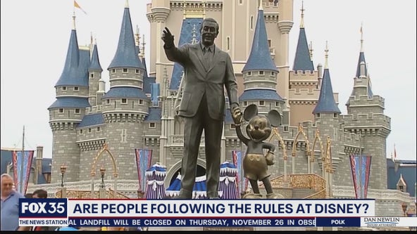 Are people following the rules at Disney?