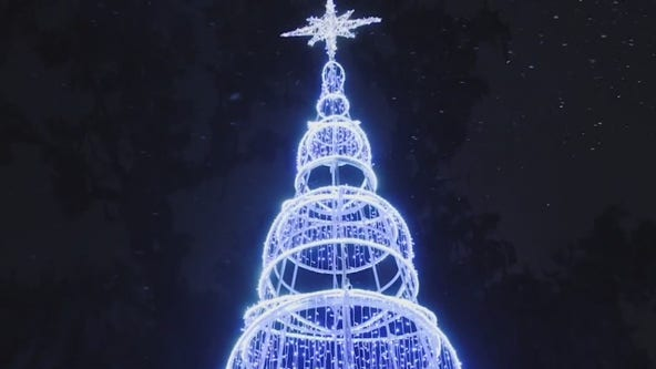 Dazzling Lights at Leu Gardens in Orlando