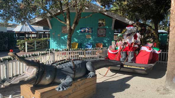 Gatorland hosts Holiday 'Ho Ho Ho-Down' event