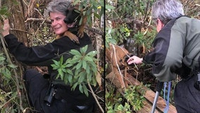 Florida animal enforcement officer saves dog trapped on island known to have alligators