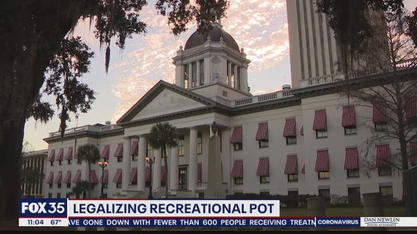 Legalizing recreational pot in Florida