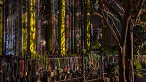 Up to 50,000 COVID-19 cases can be traced back to Mardi Gras 2020, study finds