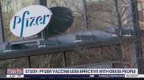 Study: Pfizer vaccine less effective with obese people