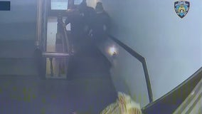 Dramatic video shows moment  2 NYPD officers are shot in Brooklyn