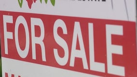 Buying a slice of paradise: New arrivals cause Florida home sales to surge