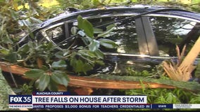 Tree falls on house after storm in Alachua County