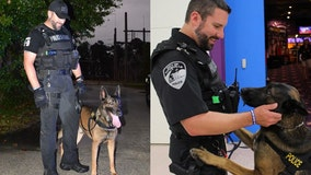 Retired Florida K9 passes away after 7 years of service