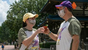 Disney announces dates for EPCOT's International Food & Wine Festival