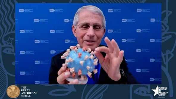 Fauci donates his personal 3D COVID-19 model to Smithsonian