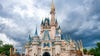 Disney World to bring back Disney College Program starting in June