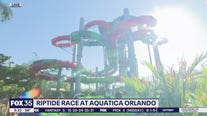Riptide Race waterslide at Aquatica in Orlando is open