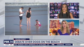 Debate over dogs on Volusia County beaches