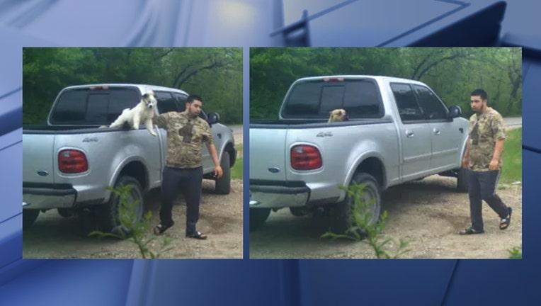 DPD animal cruelty suspect