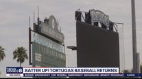 Totugas baseball returns