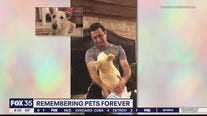 Remembering pets forever: Florida company creates custom-made stuffed animals of family pets