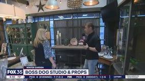 Boss Dog Studio and Props