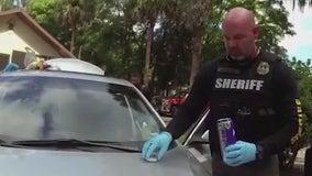 Deputies: 16 arrested in massive drug bust at Central Florida home