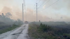 Officials: Massive 'Tree Frog' wildfire in Central Florida now 60% contained