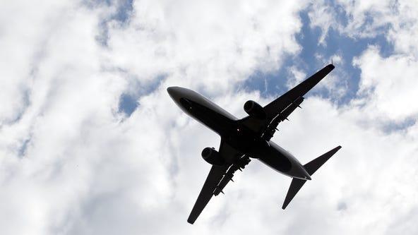 Passenger jet lands safely in LA after bird strikes engine