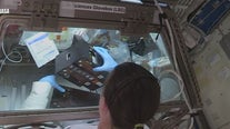 Astronauts at space station begin experiments brought by Crew Dragon