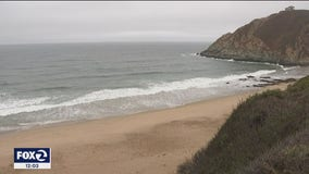 Pacifica beaches reopened after weekend shark attack