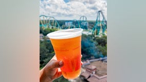 SeaWorld Orlando giving out free beer all month long