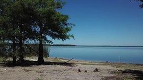 Health officials warn of blue-green algae, harmful algal blooms in Central Florida lakes