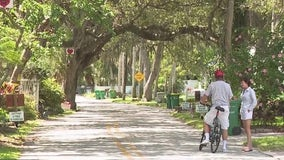 Rockledge residents protest removal of 100-year-old oak trees