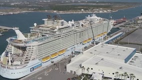 Upcoming cruises excite businesses at Port Canaveral