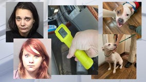 2 Palm Bay women accused of leaving dogs unattended in running vehicle