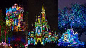 Disney World announces 2021 holiday festivities at the parks