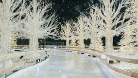 Enchant Christmas returning to St. Petersburg this winter