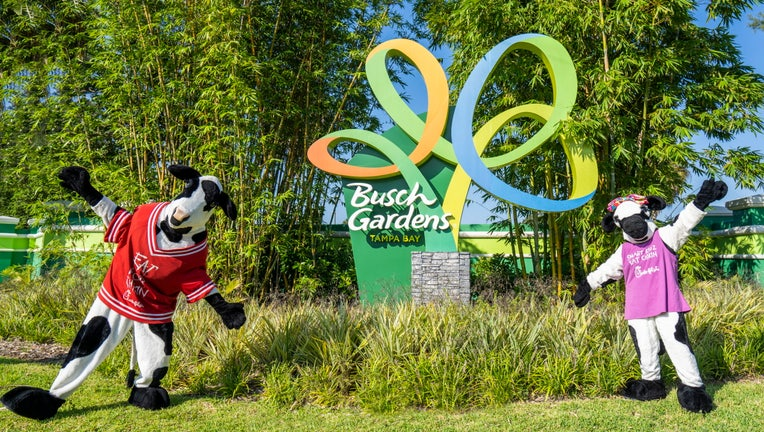 This fall, the first Florida theme park to open a Chick-fil-A will be Busch Gardens Tampa Bay