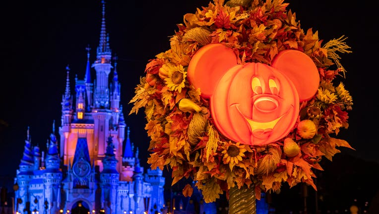 walt disney world magic kingdom fall