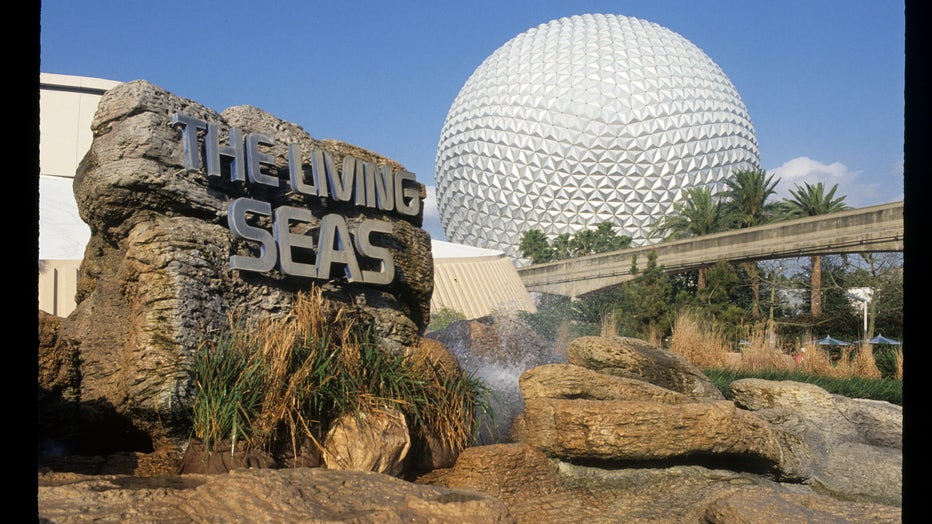 disney living seas