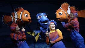 Disney: Updated 'Finding Nemo' musical coming to Animal Kingdom