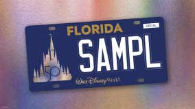 Florida drivers can now purchase Walt Disney World plates