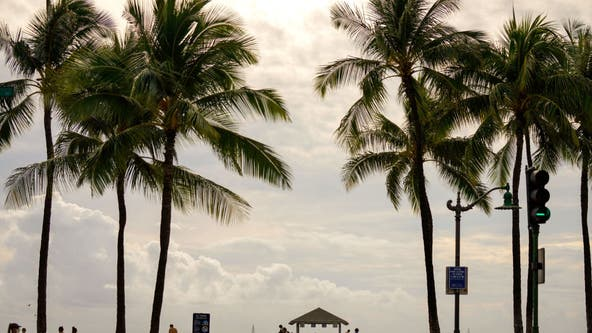 Pressure mounts on Hawaii to test more travelers for COVID-19 amid surge