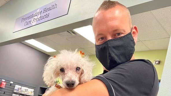 Orlando dog Petal gets adopted after recovering from torture and neglect