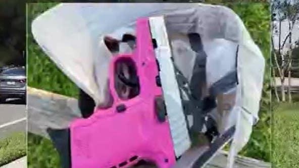 Parents worried after loaded pink gun found along sidewalk in neighborhood