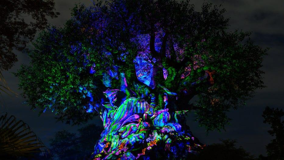 walt disney world beacon of magic