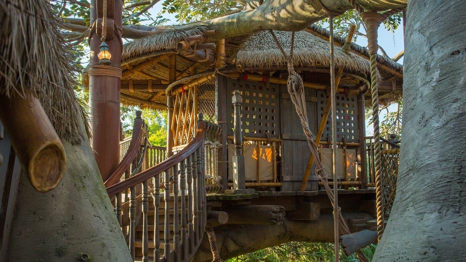 swiss family treehouse walt disney world